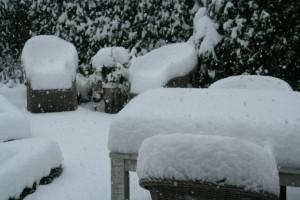sneeuw koud