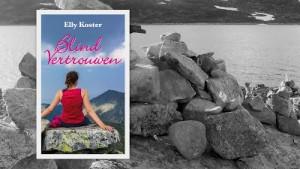 Blind vertouwen en voor en achterkant boek6