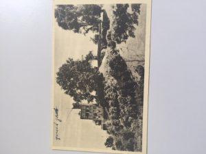 OOme Maarten, Nijmeegse Vierdaagse, Wandelmars, 1951, soldaat, ome, blog, 4daagse